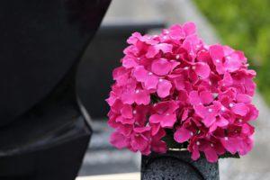 Jak wyczyścić sztuczne kwiaty?